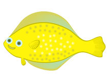 Happy sea flounder fish Yellow large spotted fish cartoon character  on white background Cartoon flatfish Sea life theme G. Happy sea flounder fish Yellow large Royalty Free Stock Images