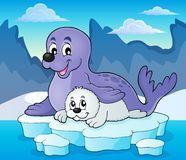 Happy seal with pup theme 2 Stock Photography