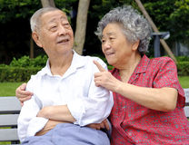 A happy senior couple Stock Image