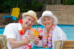 Happy senior couple. Drinking cocktail and toasting each other royalty free stock photography
