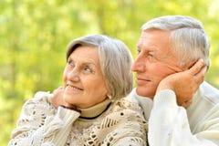 Happy senior couple in autumn park hugging stock images