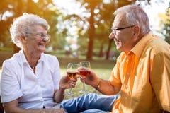 Happy senior couple celebrates anniversary in park Royalty Free Stock Images