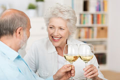 Happy senior couple celebrating Royalty Free Stock Photos