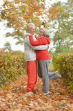 Happy senior couple dancing. In autumn park Royalty Free Stock Image