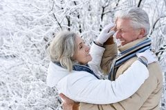 Senior couple dancing at winter outdoors royalty free stock photo