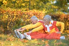 Portrait of cute senior couple doing exercises stock photos