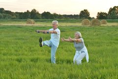 senior couple doing exercises Stock Photography