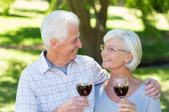 Happy senior couple drinking at the park Royalty Free Stock Images