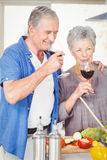 Happy senior couple drinking red wine Royalty Free Stock Photo