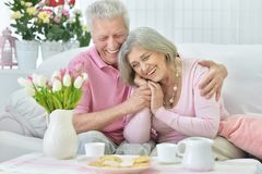 Happy senior couple  drinking tea. With cookies Royalty Free Stock Images