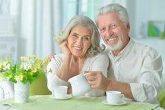 Happy senior couple drinking tea Royalty Free Stock Image