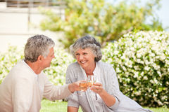 Happy senior couple drinking wine Royalty Free Stock Image