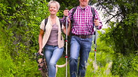 Happy senior couple hiking with dog. In summer (Full HD stock video footage