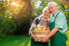 Happy senior couple holding basket. Stock Photography