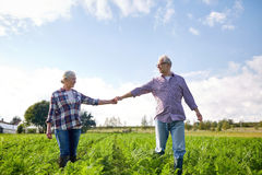 Happy senior couple holding hands at summer farm Stock Images