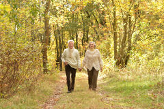 Happy senior couple holding hands together and walking. On forest path Royalty Free Stock Photos