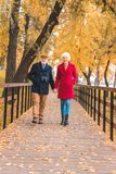 Happy senior couple holding hands and walking. In autumn park royalty free stock photo