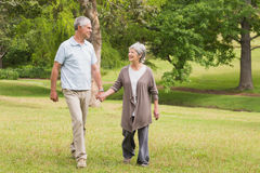 Happy senior couple holding hands and walking in park Royalty Free Stock Photo
