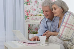 Happy senior couple with laptop Royalty Free Stock Image