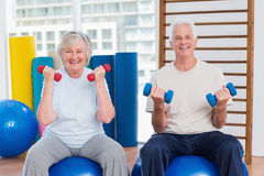 Happy senior couple lifting dumbbells on exercise ball. Portrait of happy senior couple lifting dumbbells while sitting on exercise ball at gym Royalty Free Stock Photos