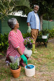 Happy senior couple looking at each other in backyard. Happy senior couple looking at each other while planting in backyard Royalty Free Stock Image