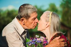 Happy senior couple in love. Park outdoors. royalty free stock photo
