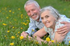 Happy senior couple lying on green meadow Royalty Free Stock Image