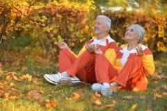 Portrait of cute happy senior couple meditating stock photography