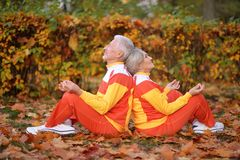 Portrait of cute happy senior couple meditating royalty free stock photo