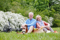 Happy senior couple outdoor Royalty Free Stock Photos