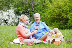 Happy senior couple outdoor Royalty Free Stock Images