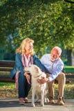 Happy Senior couple outdoors with dog enjoying royalty free stock image