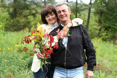Happy senior couple in a park. Happy senior couple in a autumn park Stock Images