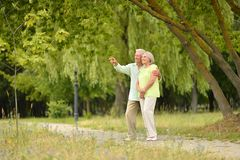 Happy senior couple in park outdoors stock photography