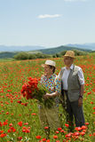 Happy senior couple picking flowers Stock Photo