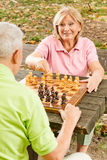 Happy senior couple playing chess Stock Photography