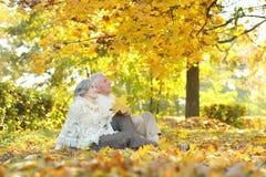 Happy senior couple Stock Image