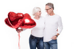 Happy senior couple posing. Stock Image