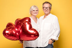 Happy senior couple posing. royalty free stock photo