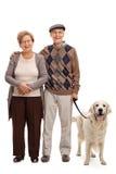 Happy senior couple posing with their dog Stock Image