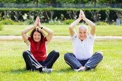 Couple Practising Yoga In Park. Happy Senior Couple Practising Yoga In Park stock image