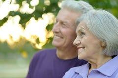Happy senior couple Royalty Free Stock Photography