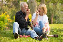 Happy senior couple relaxing in park eating apple together morning time. old people sitting on grass in the autumn park . Elderly