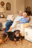 Happy senior couple relaxing with their dog at home Royalty Free Stock Photo
