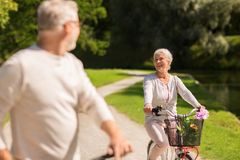 Happy senior couple riding bicycles at summer park Royalty Free Stock Photos