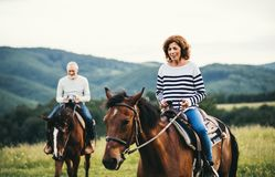 A senior couple riding horses in nature. Royalty Free Stock Images