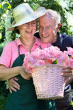 Happy senior couple with rose cuttings in garden. Royalty Free Stock Images