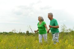 Senior couple running on meadow. Happy senior couple running on green meadow Stock Images