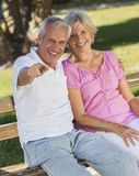 Happy Senior Couple Sitting on Bench in Sunshine. Happy senior men and women couple sitting together laughing and pointing on a park bench outside in sunshine Royalty Free Stock Photos