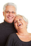 Happy senior couple smiling Royalty Free Stock Photo